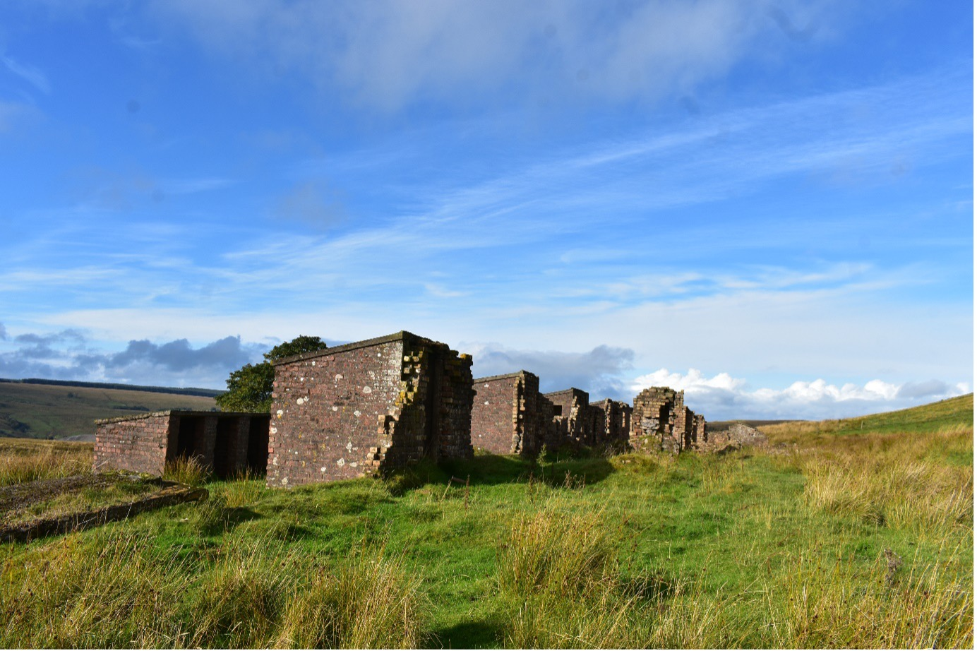 Row of outhouses  surrounded by grass and against a blue sky at the site of the mining village of Corbie Criaig's Aryshire