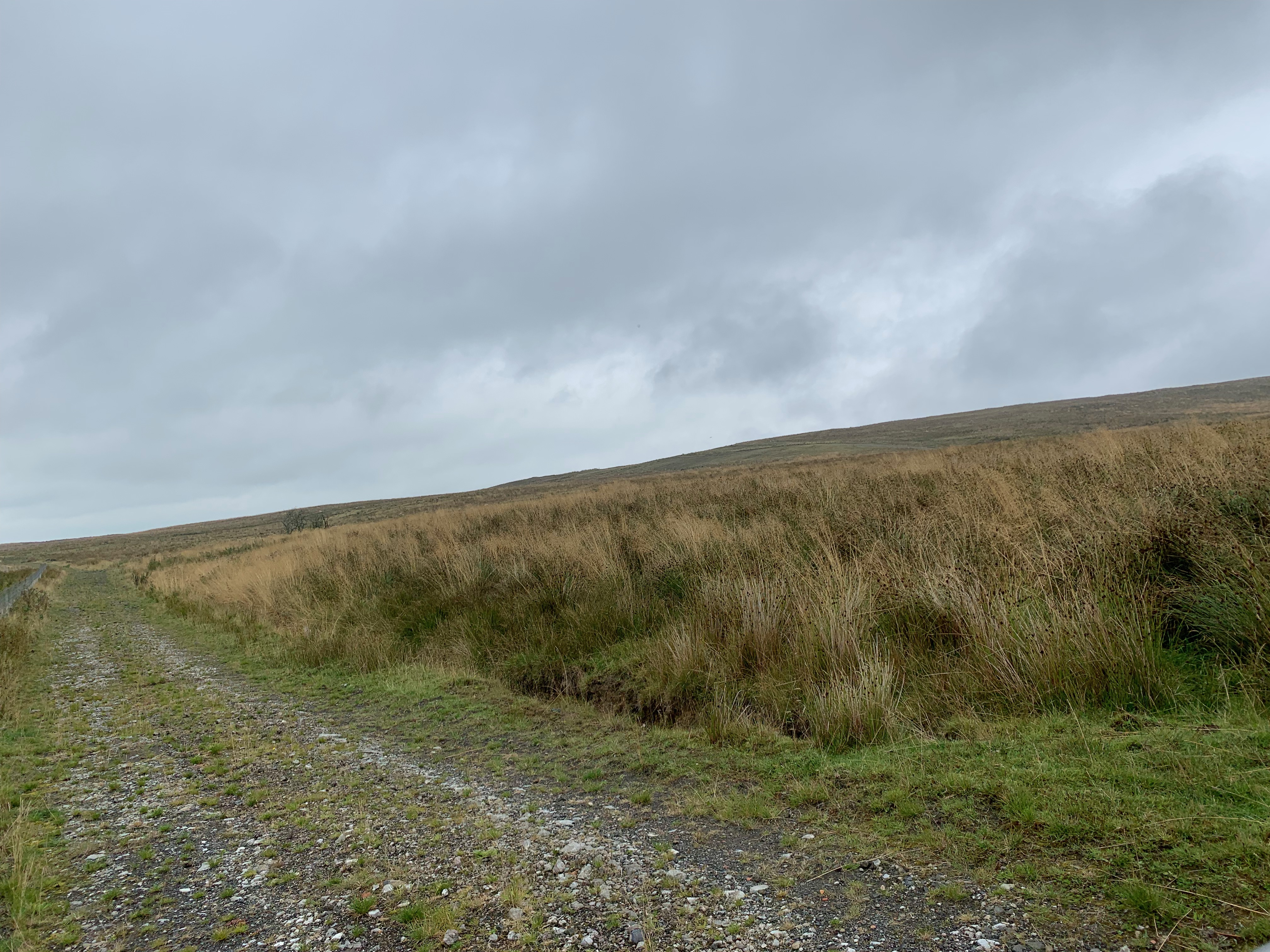 a track into the hills with grass on the right hand side