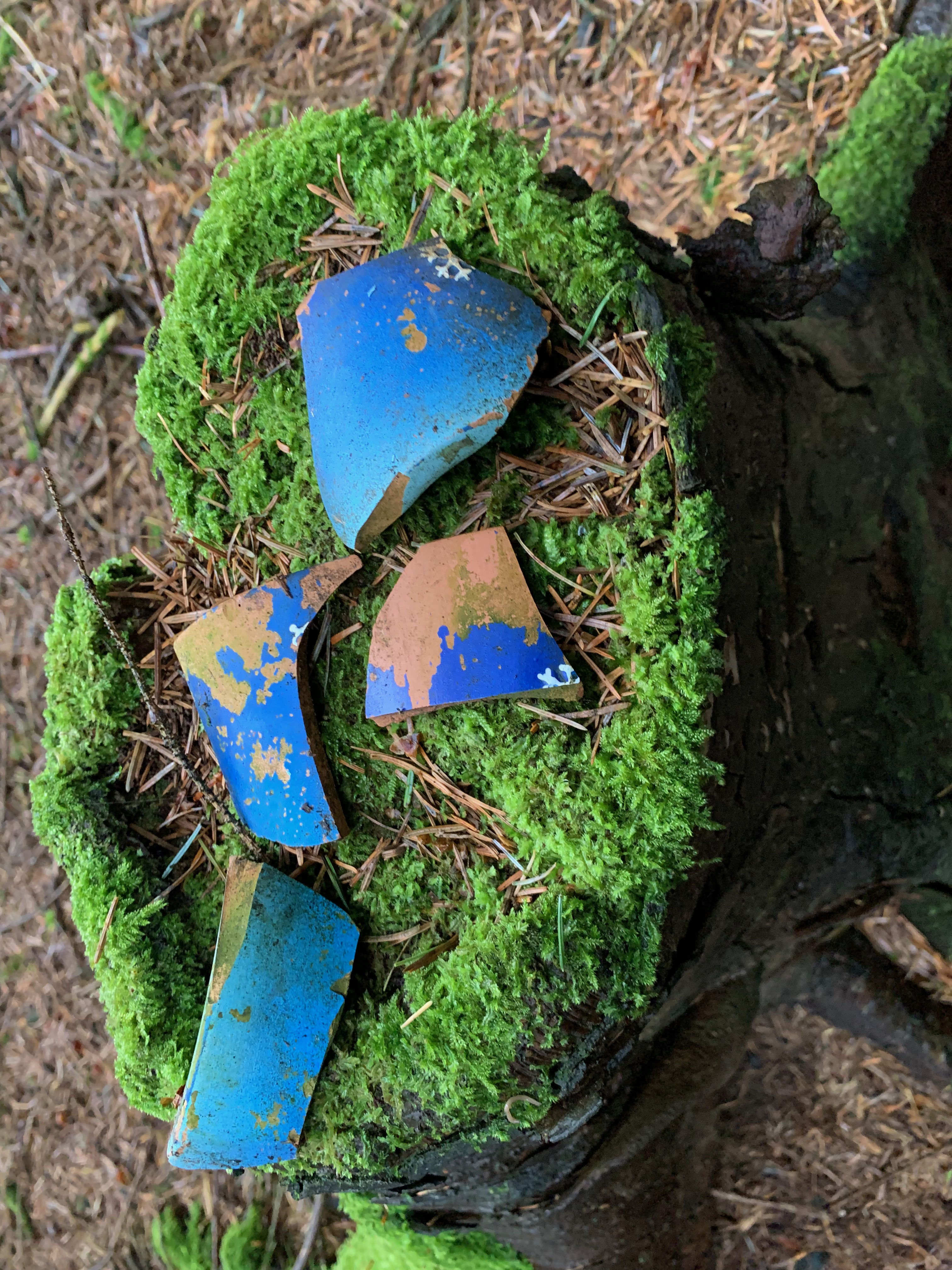 broken blue pottery with white snowflakes painted on a moss covered tree stump in a forest